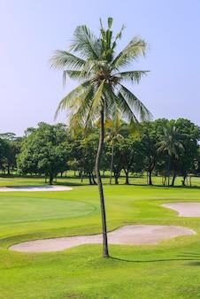 Golfplatz mit blauem himmelshintergrund