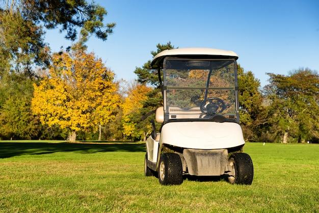 Golfwagen auf einem golfplatz