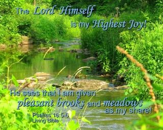 Gott ist meine höchste freude sein