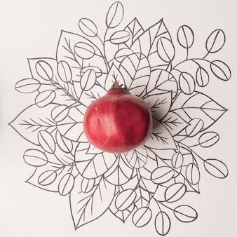 Granatapfel über umriss blumenhintergrund