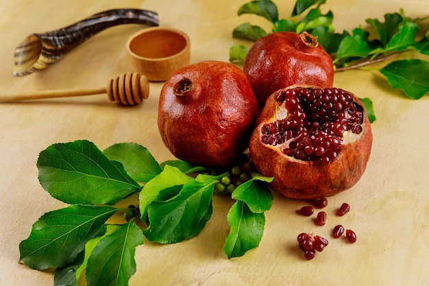 Granatapfel und honig für rosh hashanah mit horn.
