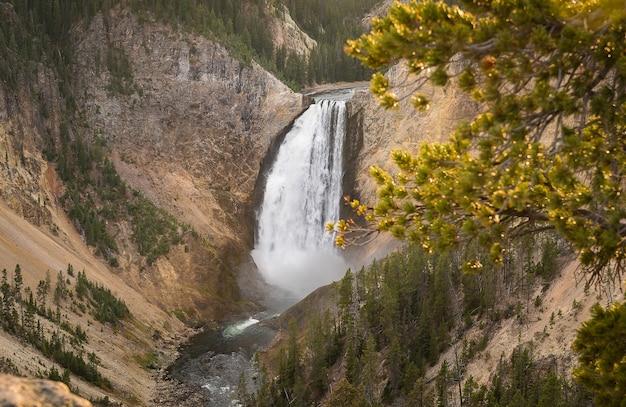 Grand canyon des yellowstone nationalparks