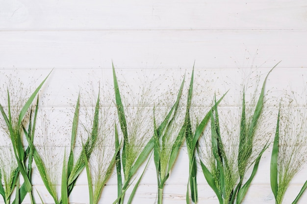 Gras auf hölzerner tischplatte