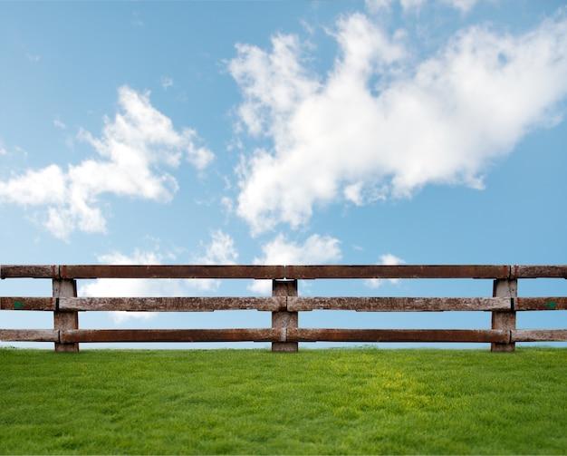 Gras mit wolken