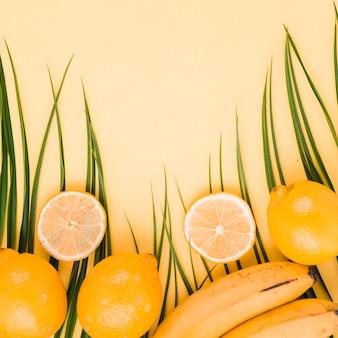Gras und tropische früchte