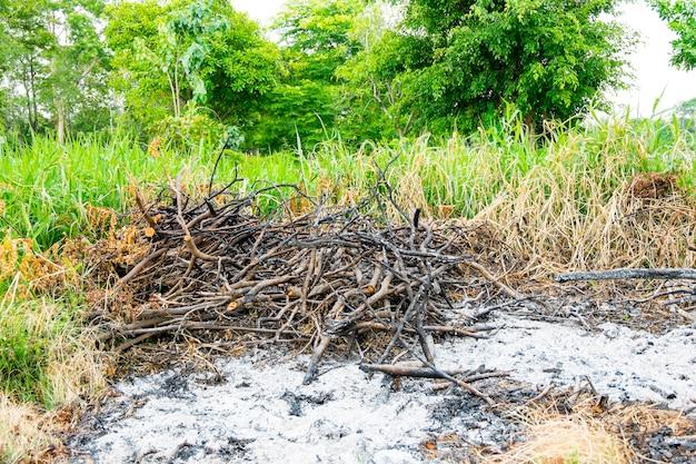 Gras und zweig verbrannten bereich in ödland