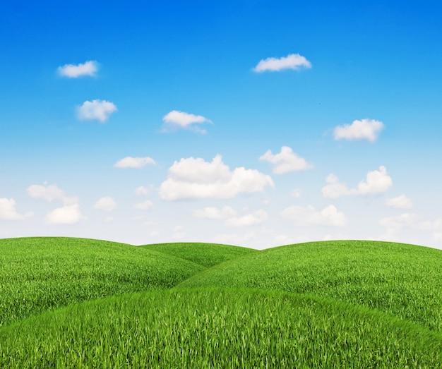 Grasberge mit klarem himmel