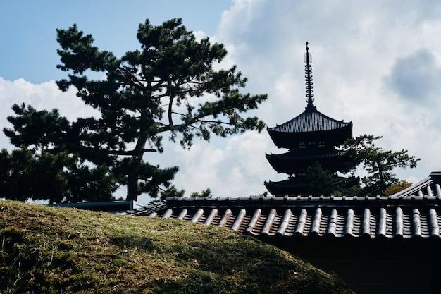 Grasbewachsener hügel mit gebäuden im japanischen stil in der ferne