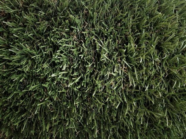 Grasboden von oben gesehen