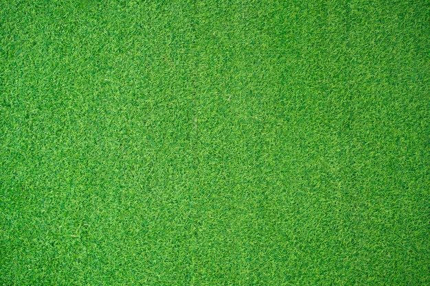 Grasfeld-hintergrund. grünes gras. grüner hintergrund