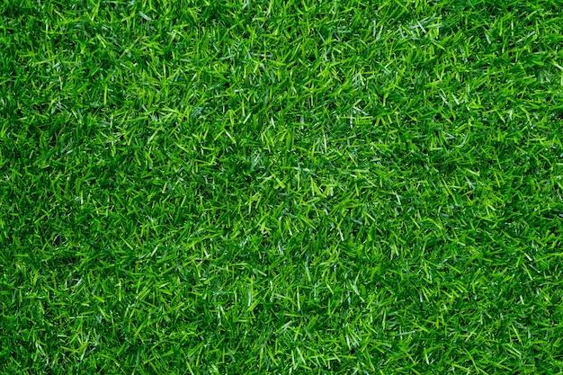 Grasfeldhintergrund, grüne natur