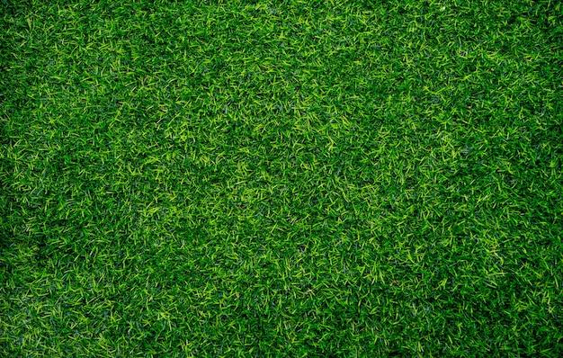 Grasfläche schließen Premium Fotos