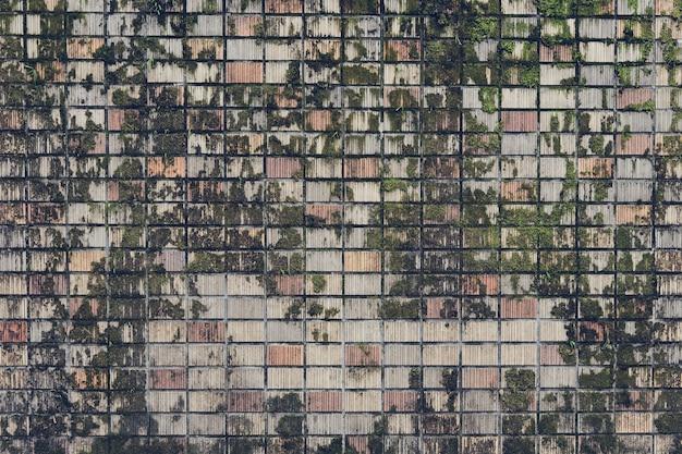 Graue farbe des rockmusters und mos-anlage des dekorativen ungleichen gebrochenen des modernen artdesigns