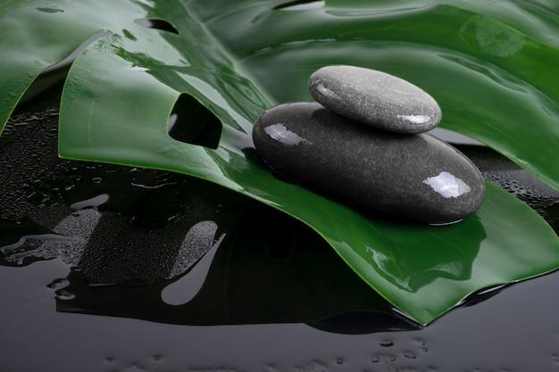 Graue steine liegen auf dem grün und dem fallenden schatten. design von schönheitssalons und friseuren.