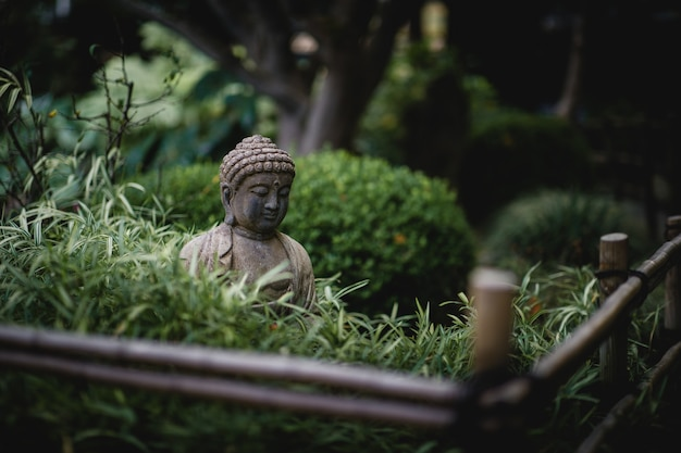 Grauer buddha nahe statue nahe grünen pflanzen
