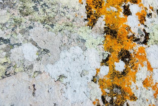 Grauer granitfelsen mit mooshintergrundbeschaffenheit