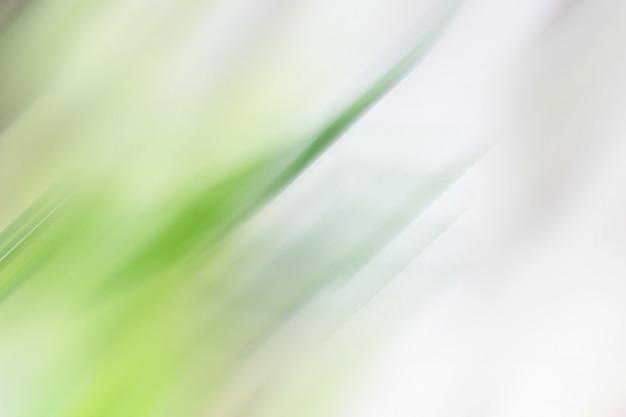 Grauer & grüner hintergrund für menschen, die grafikwerbung verwenden möchten.