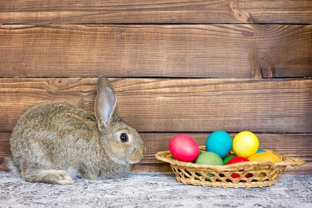 Graues kaninchen mit einem korb von ostereiern auf dem hintergrund von hölzernen brettern, das konzept für den feiertag von ostern