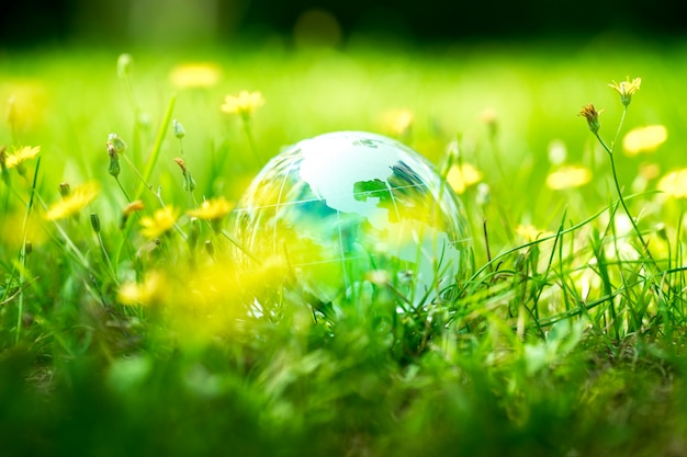 Green & eco-umgebung, glaskugel im garten