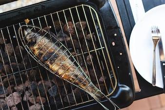 Grillen von Fischen im Gitter