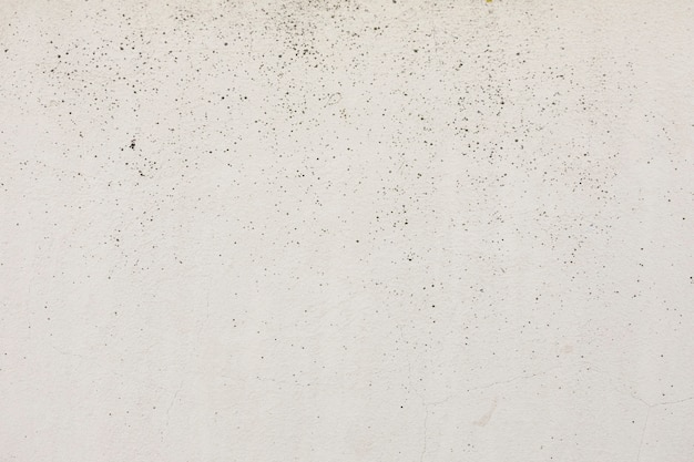 Grobe wandfläche mit flecken