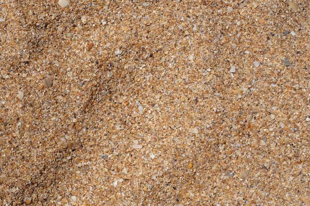 Grober sand von muscheln. textur, vorlage für text. natürlicher sommerhintergrund.