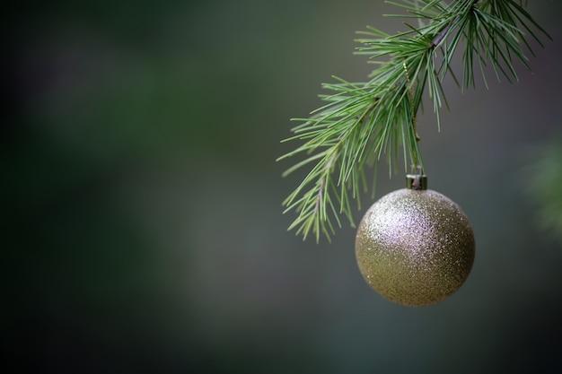 Großaufnahme des goldenen balls als dekoration, die an den niederlassungen eines weihnachtsbaums hängt