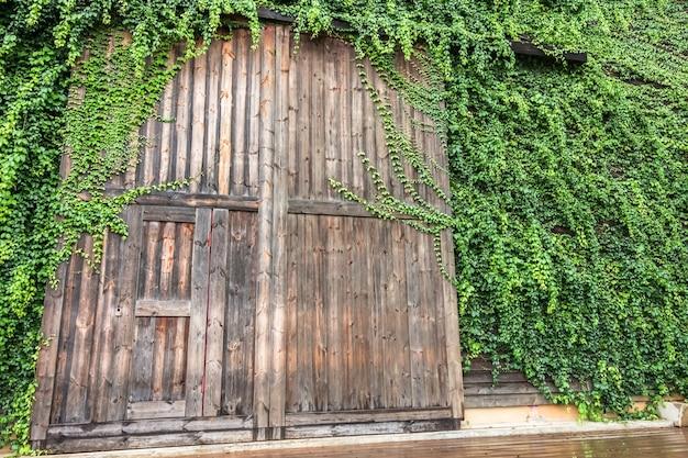 Große holztüreinfassung mit der grünpflanze, die birder's lodge genannt wird