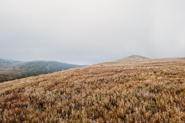 Große hügel an gefrorenem morgen auf nebel an den karpatenbergen