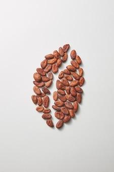Große kaffeebohne aus frischen, trockenen bio-kakaobohnen