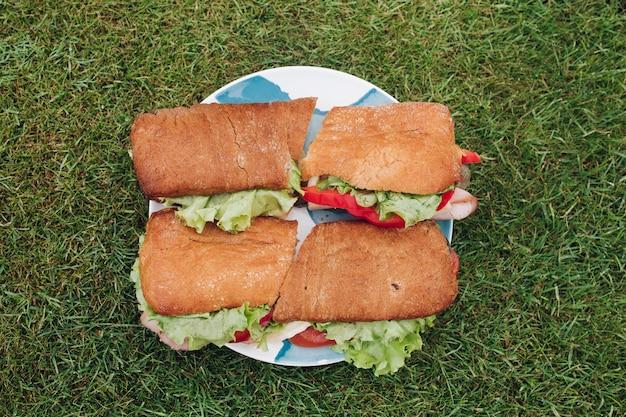 Große platte der nahaufnahme mit appetitanregendem frischem sandwich auf grünem gras