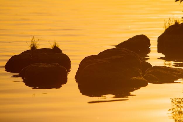 Große steine sind im fluss bei sonnenuntergang im sommer. pflanzen sprießen auf steinen im wasser