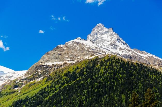 Großer berg auf hintergrund des blauen himmels. schöne landschaft der wilden natur. bergwald