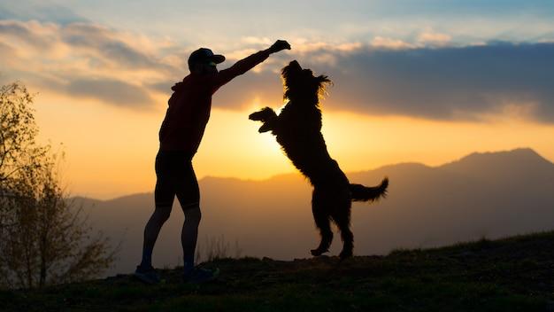Großer hund er steht auf zwei pfoten auf, um einen keks von einer mannsilhouette mit hintergrund bei bunten sonnenuntergangsbergen zu nehmen