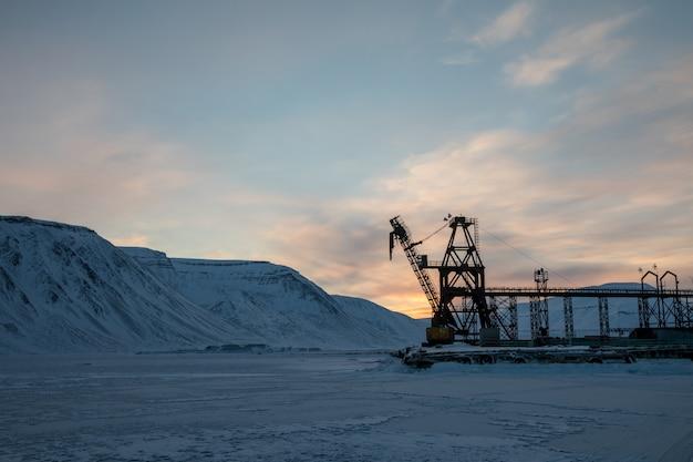 Großer kranich in der winterlandschaft bei pyramiden, spitzbergen.
