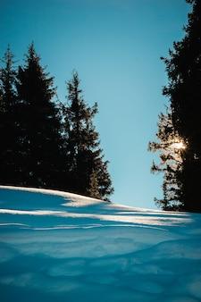 Großer schatten im klaren himmel der kamera winterberglandschaft tianshan alatau-gebirge almaty-stadt