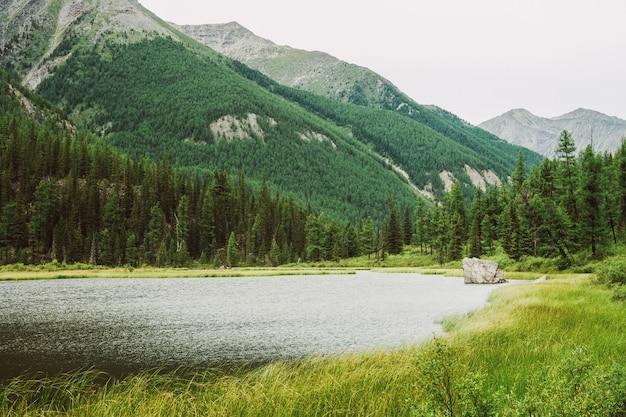 Großer stein in kleinem bergsee mit glänzender oberfläche inmitten üppiger vegetation gegen wunderbare riesenberge.