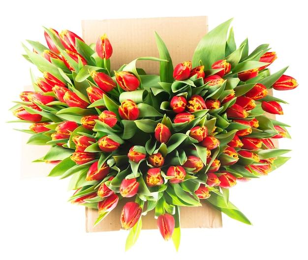 Großer strauß roter tulpen in einem korb auf weißem hintergrund