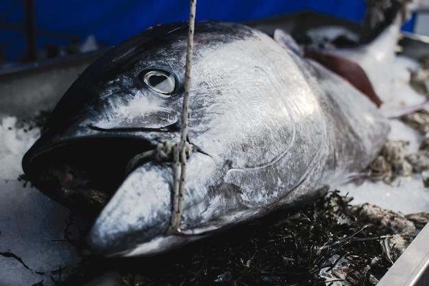 Großer thunfisch im nahrungsmittelmarkt