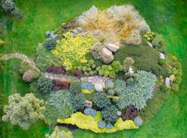 Großes alpines rutschenblumenbeet mit verschiedenen zierpflanzen, draufsicht.