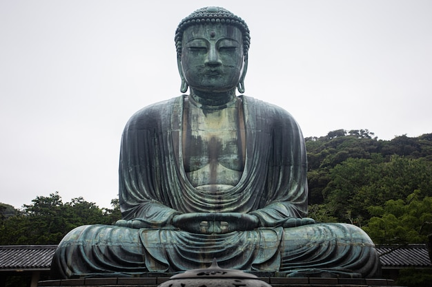 Großes buddha-bild in japan