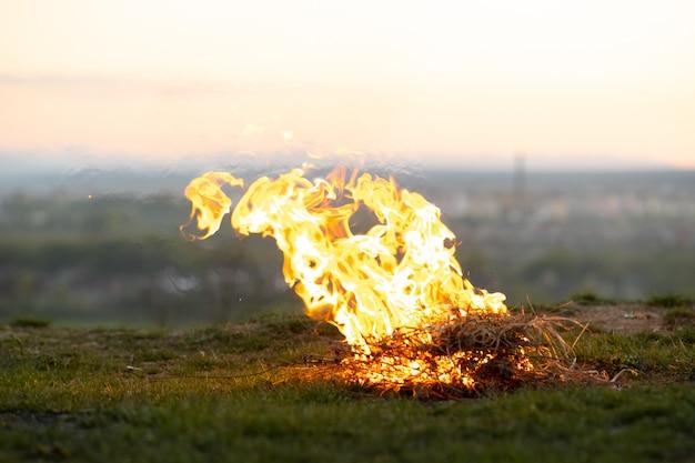 Großes helles lagerfeuer, das am abend auf feld fängt.