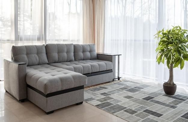 Großes sofa, pflanze und große fensterinnenausstattung mit morgensonne von außen