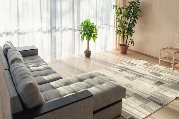Großes sofa, pflanzen und eine große fenstereinrichtung mit morgensonne aus den fenstern
