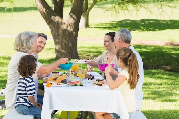Großfamilie, die im rasen zu mittag isst