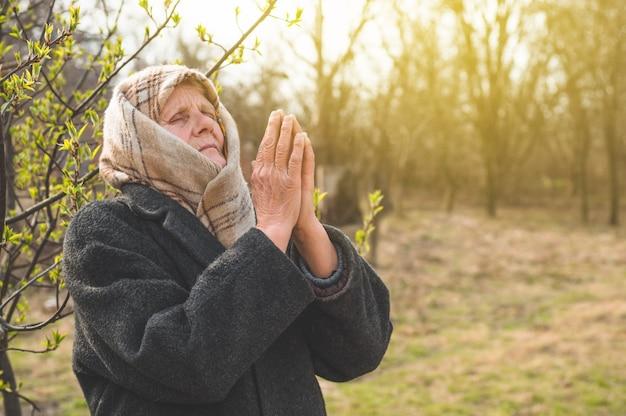 Großmutter betet für glauben, spiritualität und religion. gott um glück, erfolg und vergebung bitten
