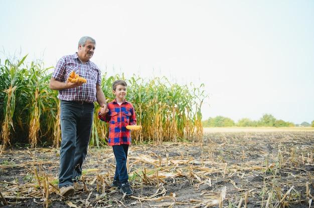Großvater und enkel mit reifen maisohren machen selfie in der nähe von trockenen pflanzen, während sie zusammen auf dem landwirtschaftlichen gebiet arbeiten