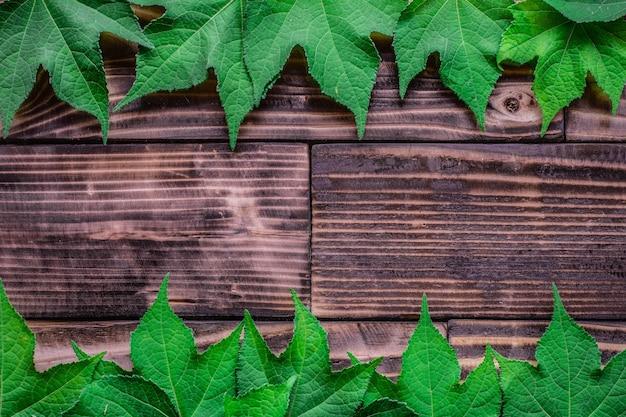 Grün lässt auf einer dunklen hölzernen beschaffenheit der tabelle und des musters der tabelle, hintergrund.
