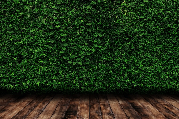 Grün lässt natürliche wand mit holzfußboden.