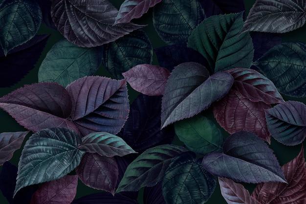 Grün und lila